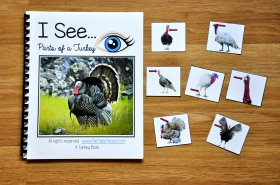 """I See"" Parts of a Turkey Adapted Book (w/Real Photos)"