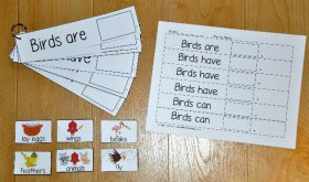 """Birds Are, Birds Have, Birds Can,"" Flipstrips"