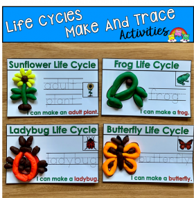 Life Cycles Make and Trace Mats