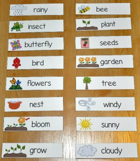 Spring Themed Visual Word Wall Words