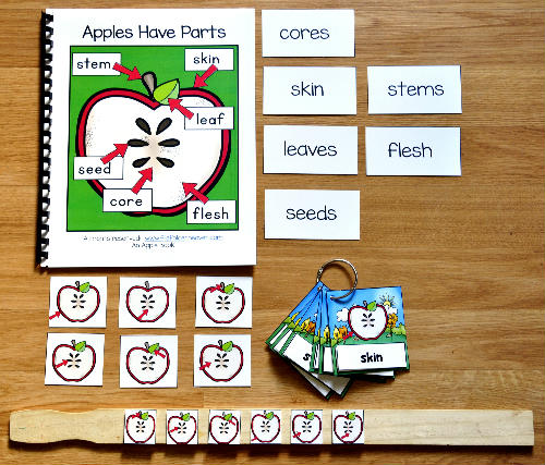 Apples Have Parts Adapted Book and Vocabulary Activities