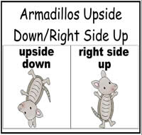 Armadillo Upside Down/Right Side Up Sort File Folder Game