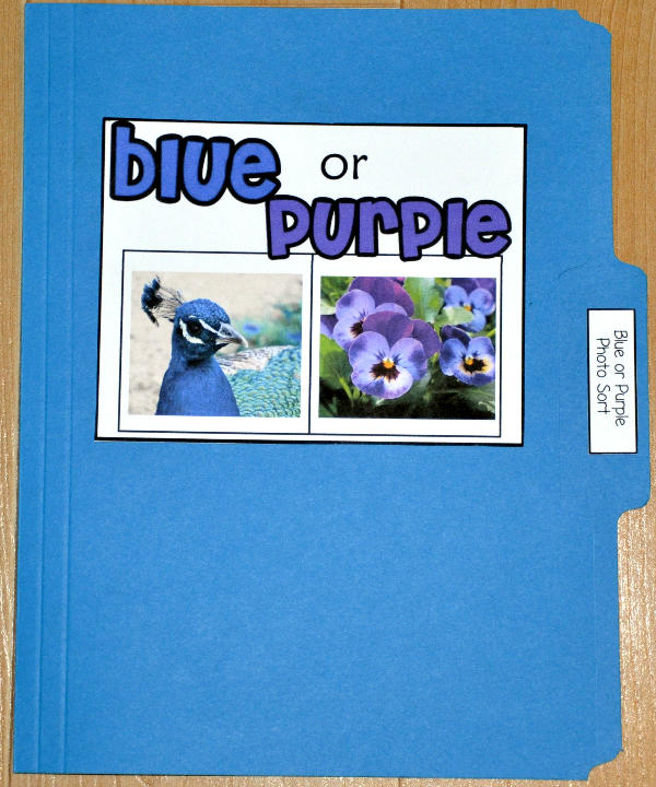 Blue or Purple Sort File Folder Game (Real Photos)