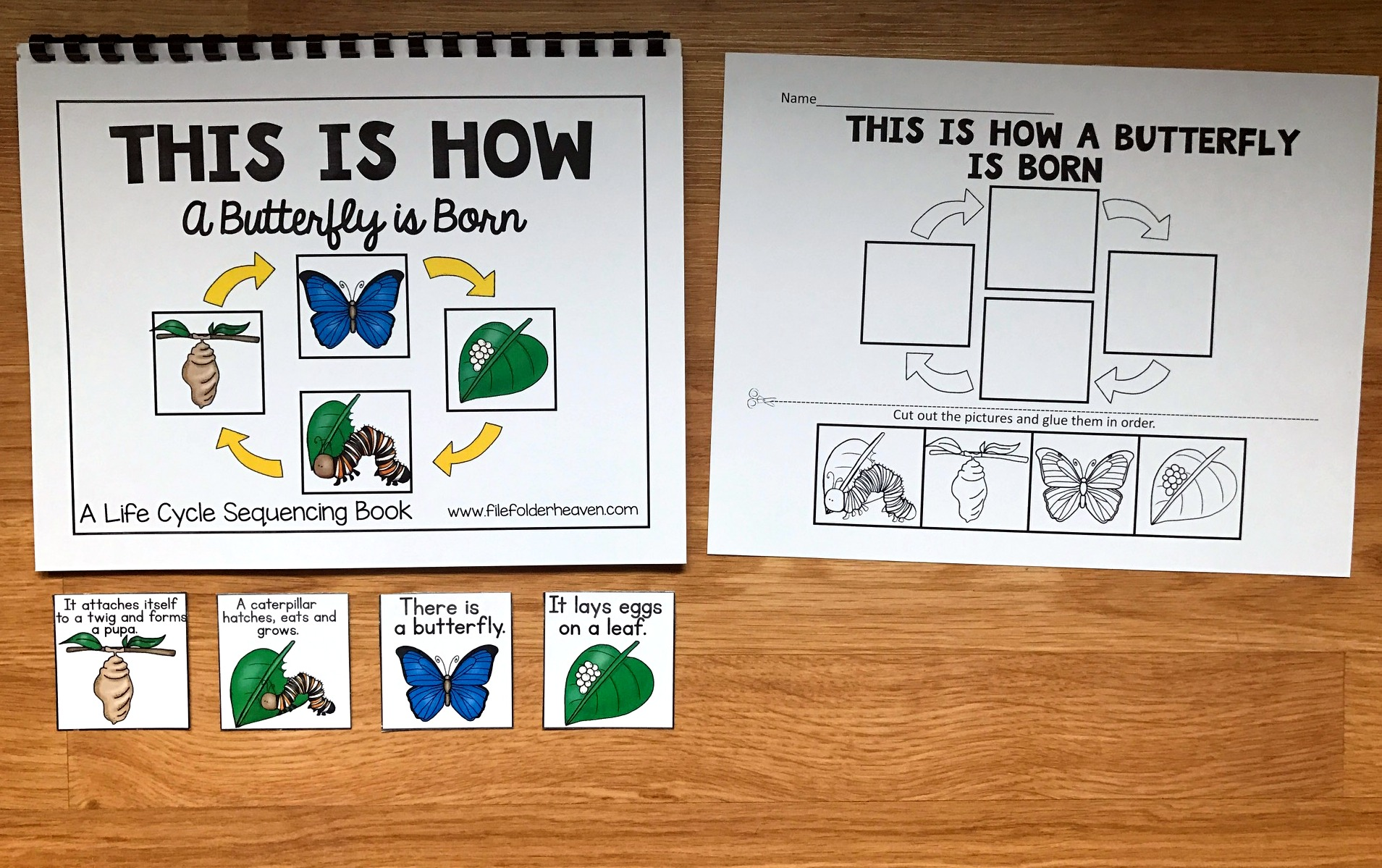 Life Cycles Sequencing Activities Bundle