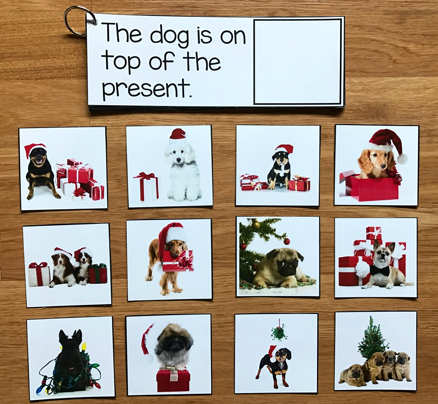 Christmas Prepositions and Sentence Comprehension w/Real Photos