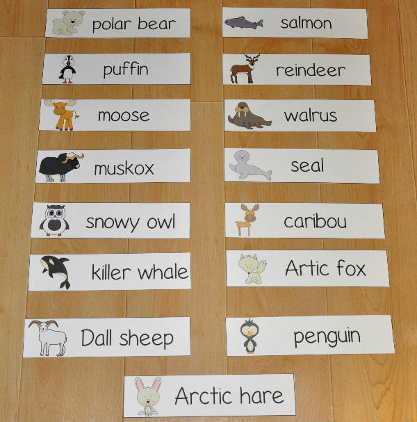 Cold Climate Animals Visual Word Wall Words