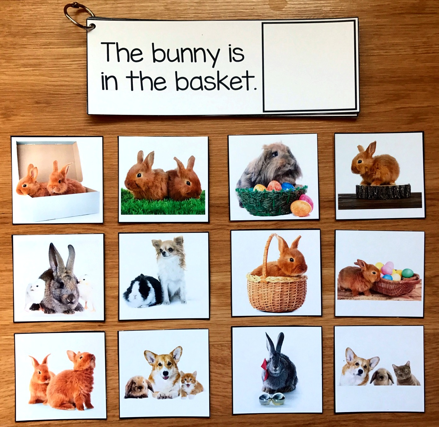 Easter Prepositions Activities (w/Real Photos)
