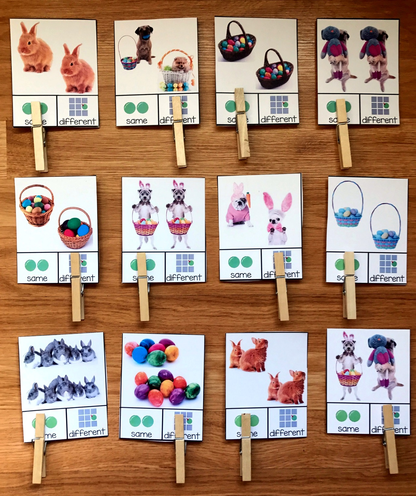 Easter Same/Different Task Cards (w/Real Photos)