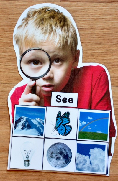 Five Senses Sorting Mats (w/Real Photos)