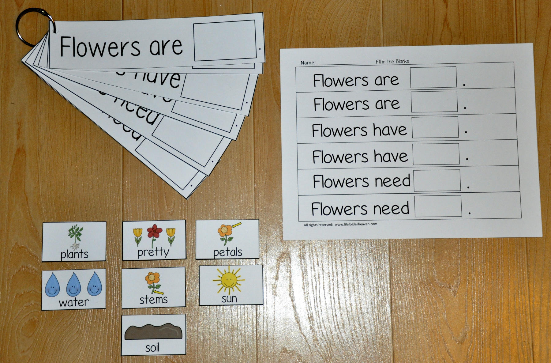 """Flowers Are, Flowers Have, Flowers Need,"" Flipstrips"