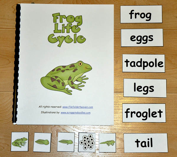 Frog Life Cycle Adapted Book