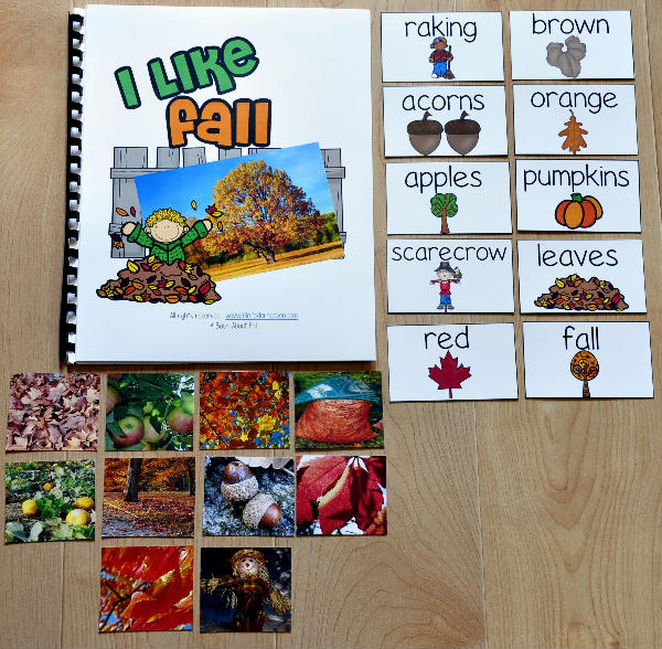 I Like Fall Adapted Book (w/Real Photos)