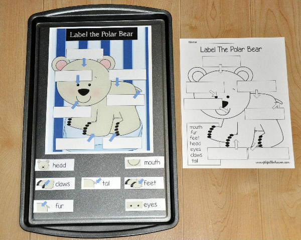 Label the Polar Bear Cookie Sheet Activity