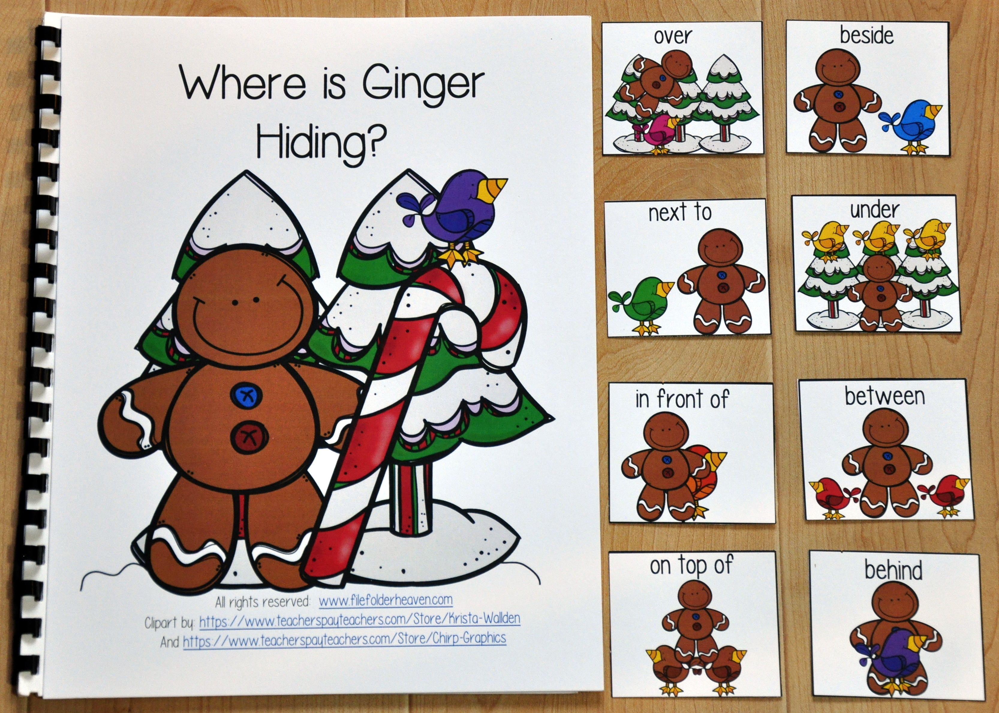 """Where is Ginger Hiding?"" Adapted Book"