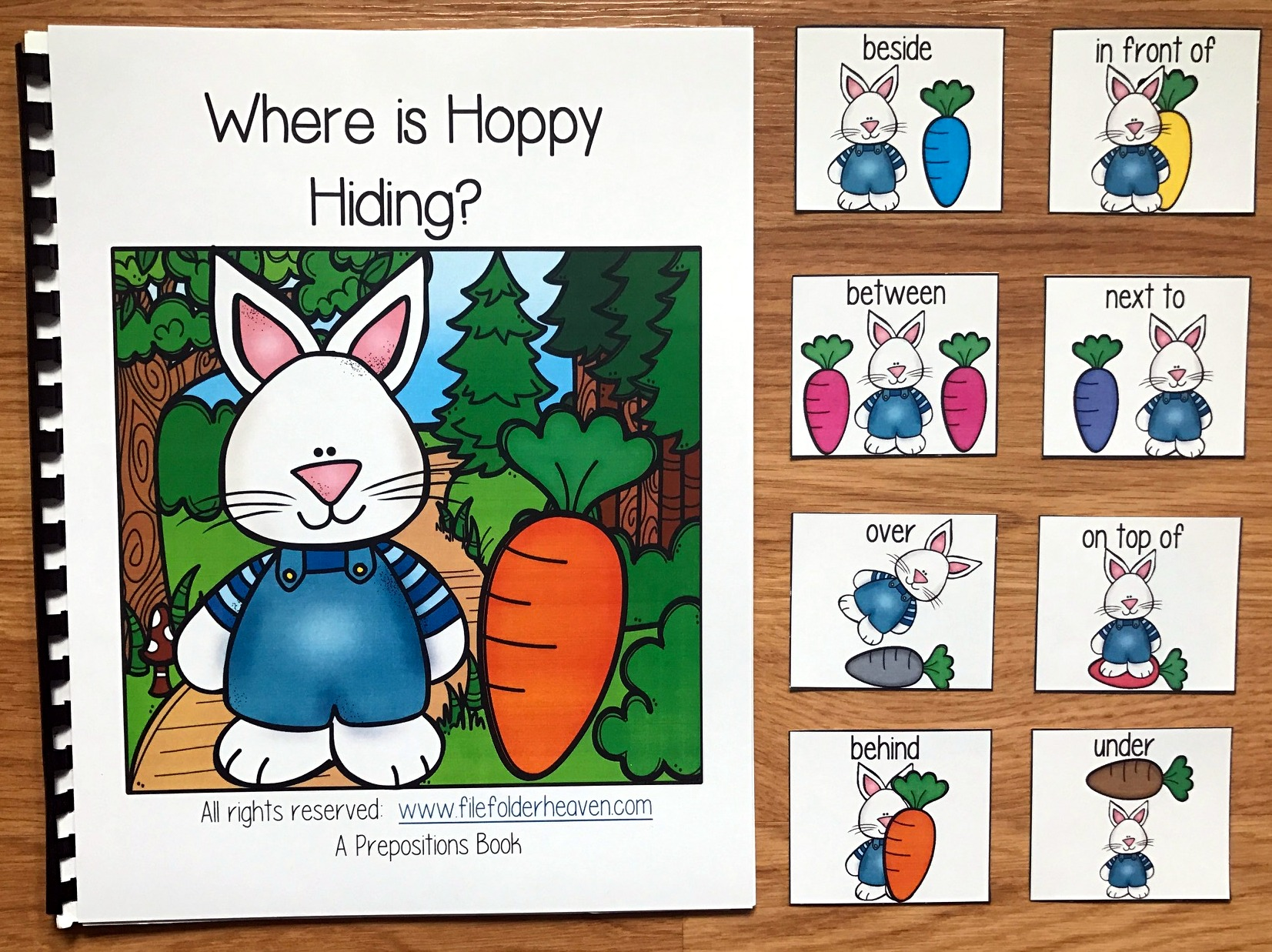"""Where is Hoppy Hiding?"" Bunny Adapted Book"