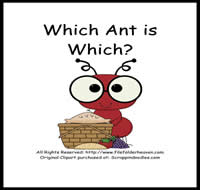 Which Ant is Which Riddle Book