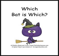 Which Bat Is Which Riddle Book