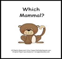 Which Mammal is Which Riddle Book